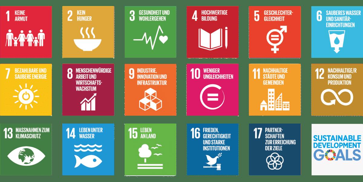 01 Sustainable Development Goals